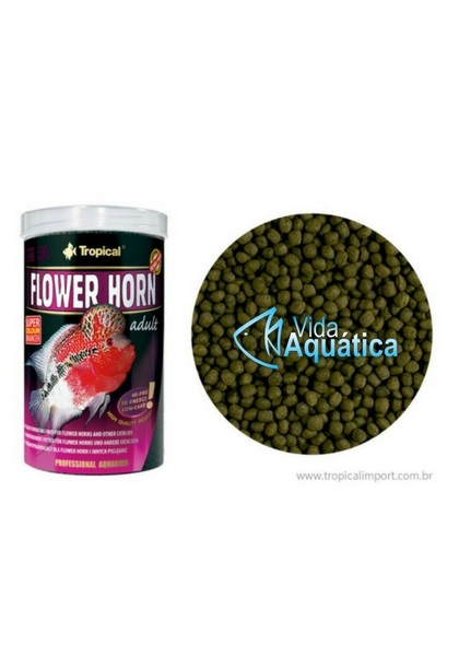 Tropical Flower Horn adult 380 gr